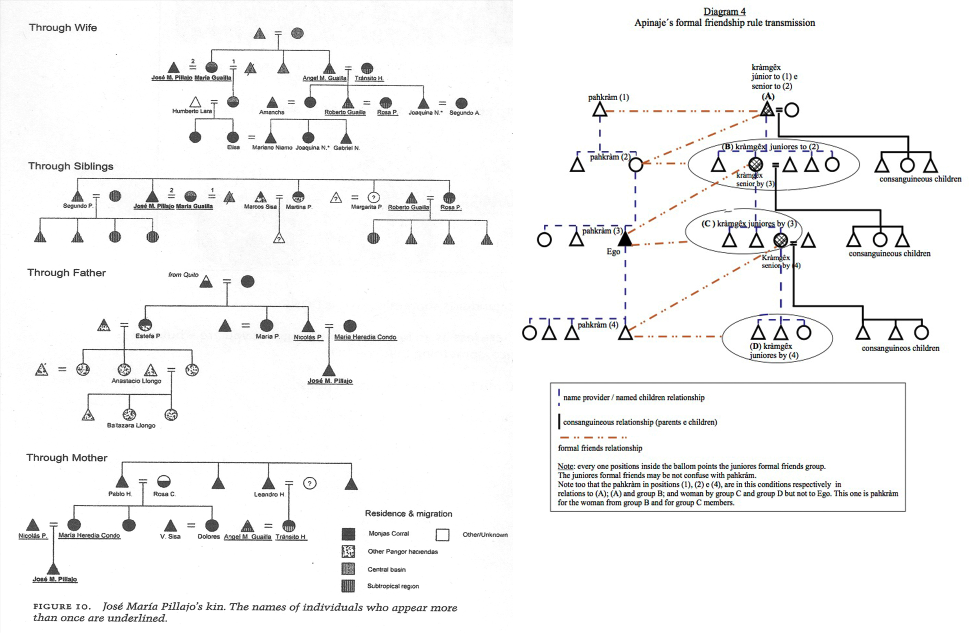 Diagrams In Anthropology Lines And Interactions Life Off The Grid